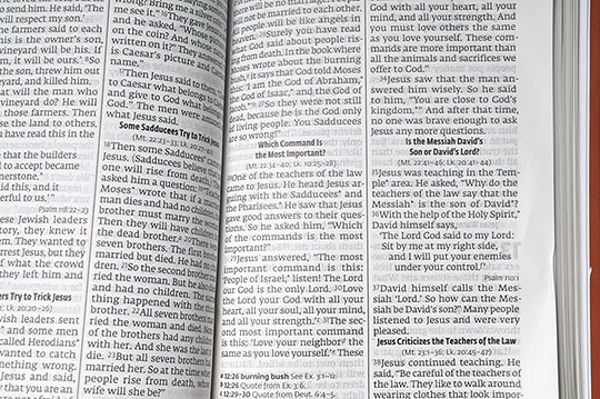 English Large Print Flexcover Bible, detail